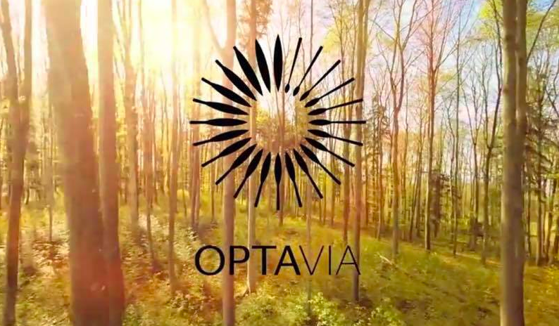 "OPTAVIA Diet – Will It Really Help You Make A ""Lifelong Transformation""?"